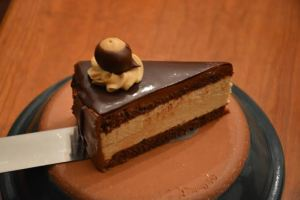 Buckeye Torte Chocolate sponge cake, separated by peanut butter mousse, topped with chocolate ganache, decorated with peanut butter buttercream and topped with a petite buckeye