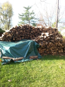 Woodpile15
